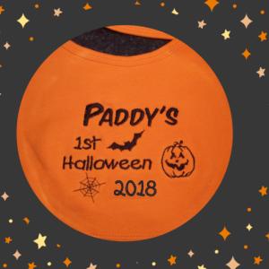 1st Halloween Bib Orange dress up keepsake dribbler 2018 cotton on embroidered black baby